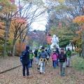 秋の【ノルディックウォーキング ツアー】を開催!!
