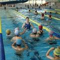 【夏期フィットネス・水泳教室】開講・申込みのご案内