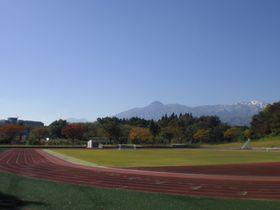 【お知らせ】4月3日(土)に「新井総合公園」グリーンシーズンの営業を開始します‼