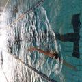 【夏前期】水泳・フィットネス教室申込み受付について(6月14日(月)から受付開始)